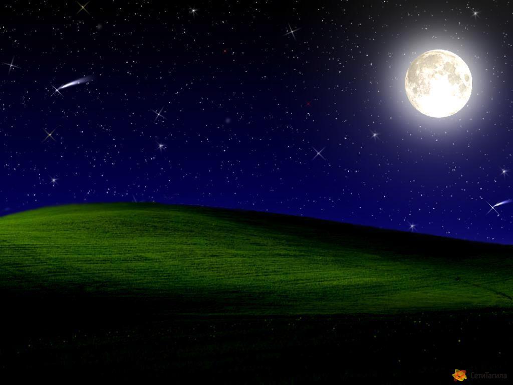 Midnight Bliss.jpg