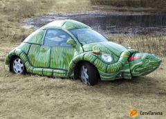 funny_car_turtle.jpg