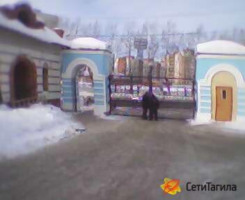 ворота в храм.jpg