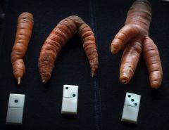морковка 123