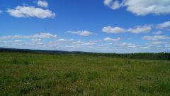 поле НиколоПавловское
