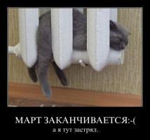 post-40-0-33072100-1327409185_thumb.jpg