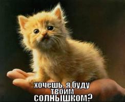 post-40-0-98168800-1327409386_thumb.jpg