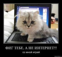 post-40-0-64936800-1333281416_thumb.jpg