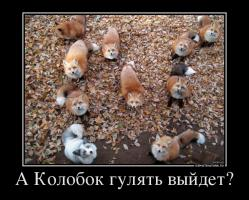 post-5892-0-71475400-1350185013_thumb.jpg