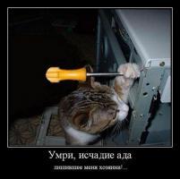 post-10493-0-85123800-1513287684_thumb.jpg